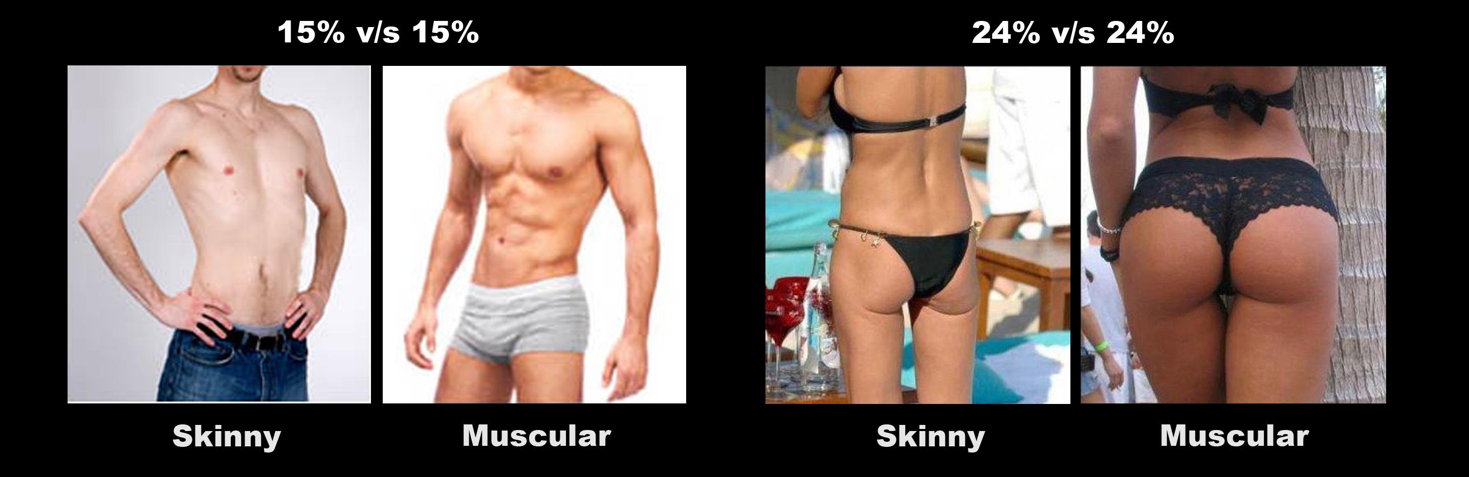 Vet omzetten in spieren onmogelijk