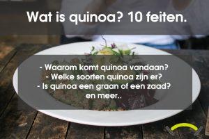Wat is quinoa? 10 dingen die je moet weten
